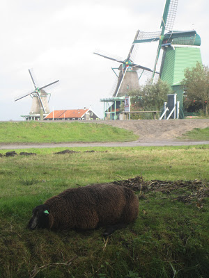 10milesbehindme_holland3