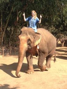 10milesbehindme_elephants12