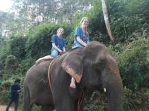 10milesbehindme_elephants18