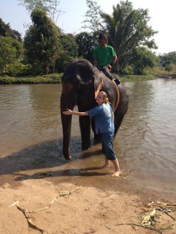 10milesbehindme_elephants20