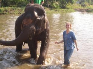 10milesbehindme_elephants22
