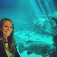 10milesbehindme_aquarium3