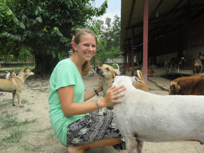 10milesbehindme_yangon_animal_shelter6