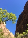 10milesbehindme_canyons15