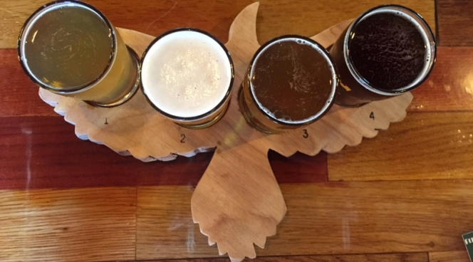 Flight of beer at Metazoa Brewing Co.
