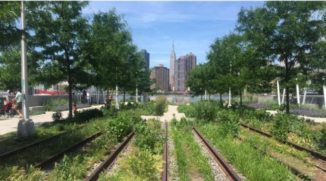 Gardens on railroad tracks in Long Island City, Queens